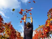 Goce de la persona en el otoño Fotos de archivo libres de regalías