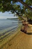 Goce de la playa en el oscilación como un rey Imágenes de archivo libres de regalías