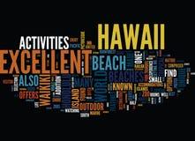 Goce de las playas excelentes en concepto de la nube de la palabra del fondo del texto de Hawaii stock de ilustración