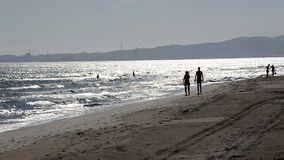 Goce del mar en el verano almacen de metraje de vídeo