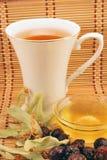 Goce del té Fotografía de archivo