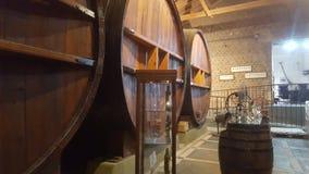 Goce del vino de la Argentina del malbec del mendoza de las uvas del lagar Imagen de archivo