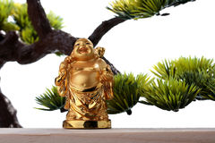 God of riches Royalty Free Stock Images