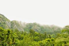 God& x27; s eigen land, Kerala stock foto's