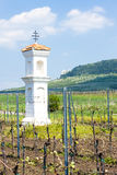 God's torture with vineyard. Palava, Czech Republic Royalty Free Stock Photography