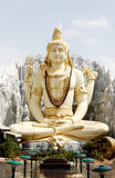 God Shiva Royalty Free Stock Image
