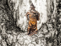 God warrior emperor stand on and heartwood background Stock Images