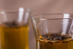 Goda di di cuocere a vapore il tè caldo dalle foglie del tè Fotografia Stock