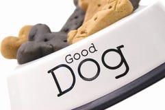 goda treats för hund Fotografering för Bildbyråer