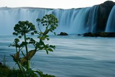 Godafoss. The waterfall Godafoss with plant- Iceland Stock Photography