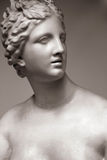 The goddess of love Aphrodite (Venus). The goddess of love in Greek mythology, Aphrodite (Venus in Roman mythology Royalty Free Stock Images