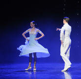 The goddess of the moon-doga waltz-the Austria's world Dance Royalty Free Stock Photos