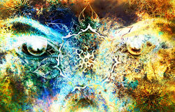 Goddess women eye, multicolor background with royalty free stock images