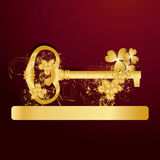 Goden key for your success Stock Photos