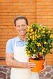Godendo del suo lavoro con le piante Immagine Stock