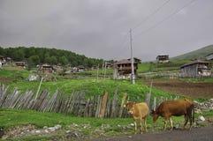 GODERDZI punto di elevata altitudine in Georgia rurale Fotografia Stock Libera da Diritti