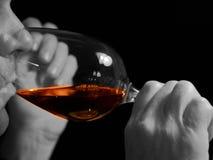 Godere del vino Fotografia Stock Libera da Diritti