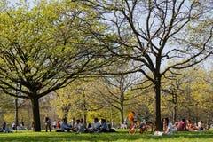Godere della molla in Hyde Park fotografie stock libere da diritti