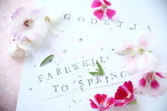 Godetia flowers with text Stock Photography