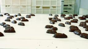 Godisfabrik Grupp av smaskiga chokladsötsaker som ligger på transportbandet på konfektfabrik arkivfilmer