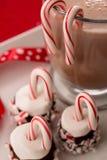 Godisrottingar och marshmallower med slut för varm choklad upp Arkivbild