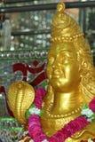 Godness of India Royalty Free Stock Images