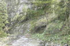Godrays in Gebirgswald-HDR-Farbfoto stockbilder