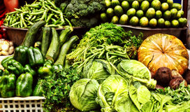 Gods gift for mankind:healthy and natural vegetables Royalty Free Stock Photo