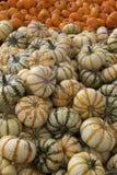 Goebbert's Pumpkin Patch Gourds Display Stock Photos