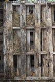 Goed doorstane houten pallets op het landbouwbedrijf stock fotografie