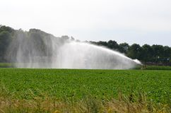 Goed, Holland - 07/07/2018: Watersproeier op landbouwgrond stock fotografie
