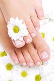 Goed-verzorgde vrouwelijke voeten met mooie teennagels Royalty-vrije Stock Fotografie