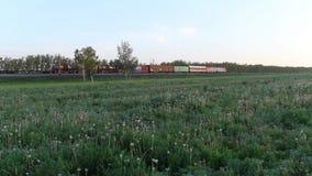 Goederentrein die een spoorwegspoor op het gebied doorgeven stock videobeelden