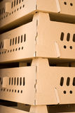gofrujący pudełkowaty karton Zdjęcia Stock