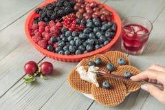 Gofry z serem, jogurtem i malinkami, Wyśmienicie zdrowotny śniadanie na lekkim tle Bardzo miękka selekcyjna ostrość obraz stock