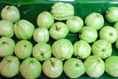 Goiaba verde da maçã Fotografia de Stock