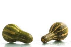 Goianinha Pumpkin. Cucurbita moschata Stock Image