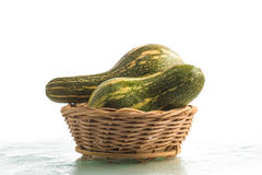 Goianinha Pumpkin. Cucurbita moschata Stock Photography