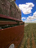 Cotton harvest. GOIAS, BRAZIL, April 14, 2004. A cotton field is being picked during the fall harvest Stock Images