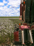 Cotton harvest. GOIAS, BRAZIL, April 14, 2004. A cotton field is being picked during the fall harvest Royalty Free Stock Images
