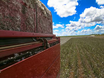 Cotton harvest. GOIAS, BRAZIL, April 14, 2004. A cotton field is being picked during the fall harvest Stock Photos