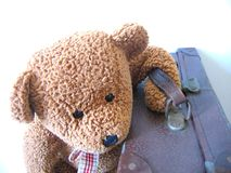 Going away. Travel teddy Stock Photos