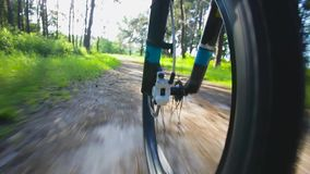 Going by Bike in the forest. Low Angle View stock video footage