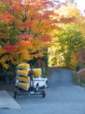 Going Canoeing. A pickup truck with trailer and a load of canoes on an autumn road ready for some canoe tripping Royalty Free Stock Photos