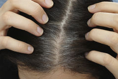 Going gray. Young woman shows her gray hair roots. Adobe RGB Royalty Free Stock Image