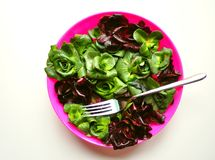 Going Green Concept: Alkaline Diet With Vegetables Royalty Free Stock Images