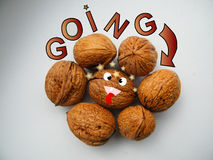 Going nuts. Crazyness Royalty Free Stock Photos