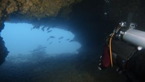 Going out of a sea tunnel. An underwater shot of a scuba diver getting out a sea tunnel. A school of fish awaits outside the tunnel stock footage