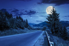 Going to nature at night. Asphalt road going off into the distance on the left, passes through the green shaded forest at night in full moon light Stock Images