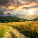 Going to nature at sunset Stock Images